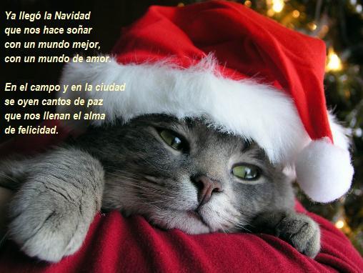 Ya viene la Navidad,cantemos con alegria. - Página 2 Navidad1